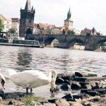 czech republic 10 places you must visit travel guide 32 150x150 CZECH REPUBLIC  10 PLACES, YOU MUST VISIT TRAVEL GUIDE