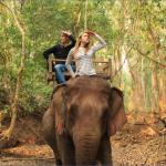 Elephant-Ride-Luang-Prabang-Laos-15.png