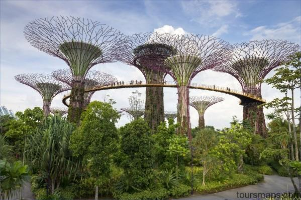 gettyimages 501842631 Singapore Travel Guide   City of the Future