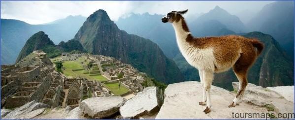 llama trek LAMA RIDES Peru