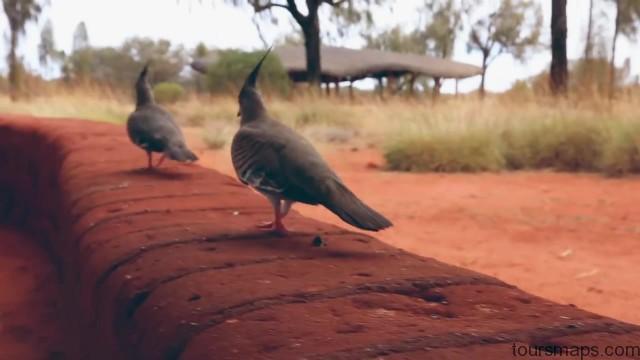 lost in the outback uluru australia 19 LOST in the OUTBACK Uluru Australia