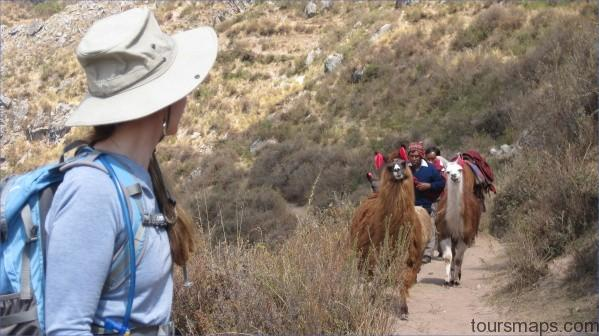 magical meeting LAMA RIDES Peru