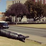 nadine does dallas texas usa 18 150x150 DALLAS Texas USA