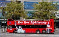 p-Gray-Line-New-York-Bus_54_990x660_201404231941.jpg