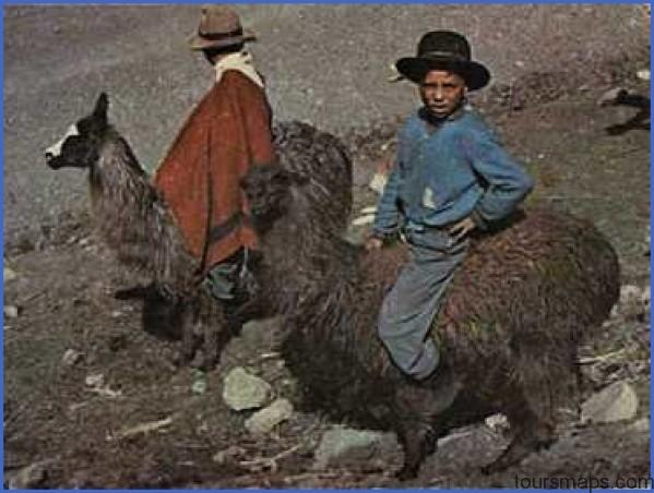 pcridingllama LAMA RIDES Peru
