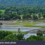 people working on rice field in mekong delta vietnam the mekong delta k4ath9 150x150 The Mighty Mekong   Mekong Delta Vietnam