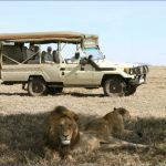 Serengeti-Tours-4-x-4Tanzania.jpg