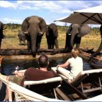 somalisa pool 900x500 c 150x150 Africa Safaris, and travel   Botswana Zimbabwe Zambia