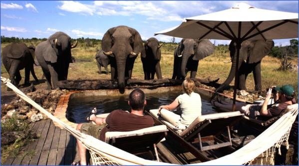 somalisa pool 900x500 c Africa Safaris, and travel   Botswana Zimbabwe Zambia