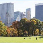 sunny day in central park with manhattan skyline cs 150x150 A DAY in NEW YORK