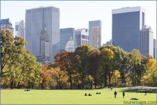 sunny day in central park with manhattan skyline cs A DAY in NEW YORK