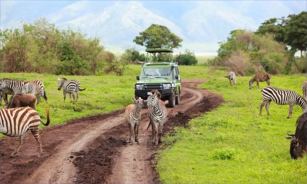 tanzania-adventure-tours.jpg