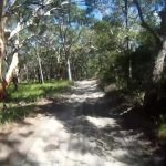 the perfect beach fraser island australia 05 150x150 THE PERFECT BEACH Fraser Island Australia