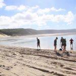 the perfect beach fraser island australia 06 150x150 THE PERFECT BEACH Fraser Island Australia