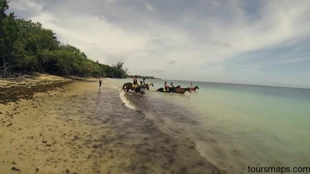 tobago top 10 things to see do travel guide 30 TOBAGO TOP 10 THINGS to See Do Travel Guide