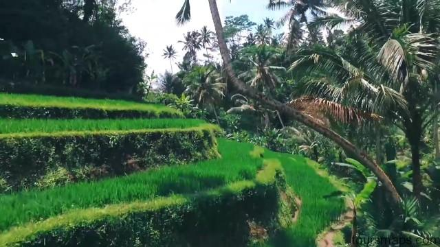 top 10 bali travellers paradise 28 TOP 10 BALI TRAVELLERS PARADISE