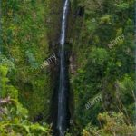 waterfall on the hana road a rugged path that goes around haleakala and along the back side of the extinct volcano on maui hawaii xdc69j 150x150 ROAD TO HANA   VOLCANOS And WATERFALLS IN MAUI HAWAII