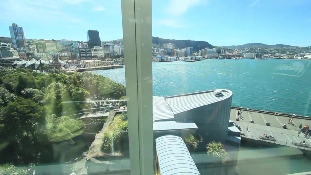 what to do in wellington new zealand 18 WHAT TO DO IN WELLINGTON NEW ZEALAND