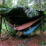 amazon rainforest adventures travel brazil 0 150x150 Amazon Rainforest Adventures   Travel Brazil