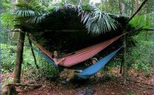 Amazon Rainforest Adventures - Travel Brazil_0.jpg