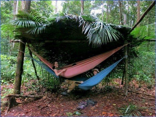 amazon rainforest adventures travel brazil 0 Amazon Rainforest Adventures   Travel Brazil