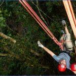 amazon rainforest adventures travel brazil 1 150x150 Amazon Rainforest Adventures   Travel Brazil