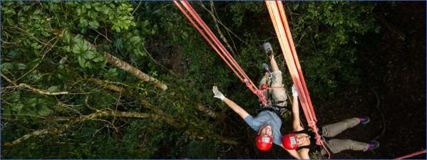 amazon rainforest adventures travel brazil 1 Amazon Rainforest Adventures   Travel Brazil