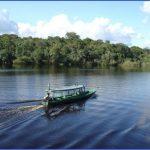 amazon rainforest adventures travel brazil 5 150x150 Amazon Rainforest Adventures   Travel Brazil
