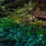 amazon rainforest adventures travel brazil 6 150x150 Amazon Rainforest Adventures   Travel Brazil