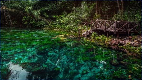amazon rainforest adventures travel brazil 6 Amazon Rainforest Adventures   Travel Brazil
