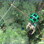 amazon rainforest adventures travel brazil 7 150x150 Amazon Rainforest Adventures   Travel Brazil