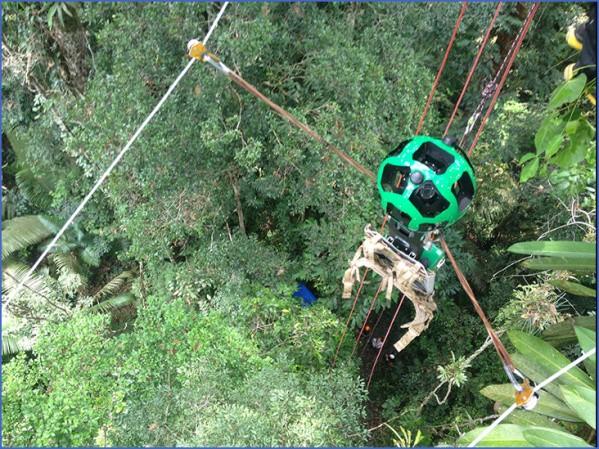 amazon rainforest adventures travel brazil 7 Amazon Rainforest Adventures   Travel Brazil