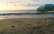 best beach day in puerto vallarta 20