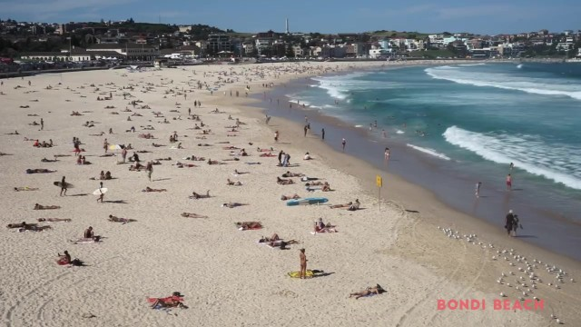 best beaches in sydney australia 18 Best Beaches in Sydney Australia