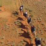 camel riding in the australian outback 22 150x150 Camel Riding in the Australian Outback