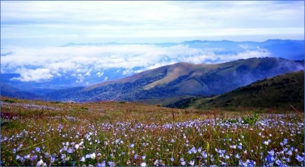 chikmagalur mullayanagiri peak 10 Chikmagalur   Mullayanagiri Peak