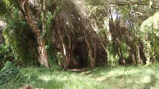 cutest teepee camping spot 23 CUTEST TEEPEE CAMPING SPOT