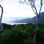 epic treehouse retreat in port douglas 02 150x150 Epic Treehouse Retreat in Port Douglas