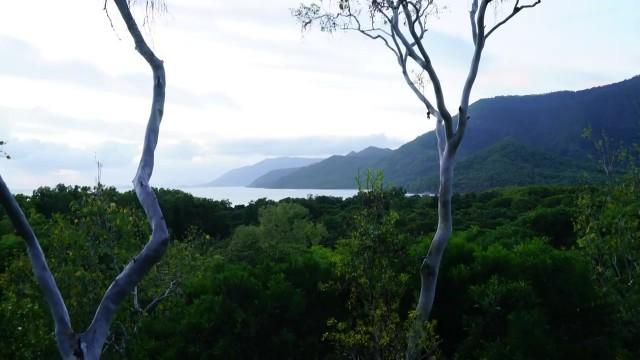epic treehouse retreat in port douglas 02 Epic Treehouse Retreat in Port Douglas