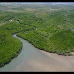 epic treehouse retreat in port douglas 57 150x150 Epic Treehouse Retreat in Port Douglas