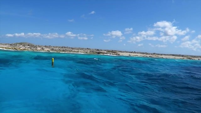 exotic private caribbean island 18 EXOTIC PRIVATE CARIBBEAN ISLAND
