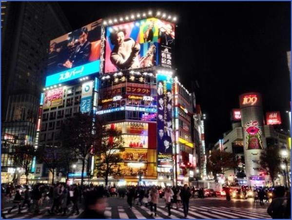 how to travel in tokyo japan 1 How to Travel in Tokyo Japan