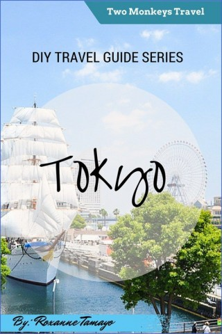 how to travel in tokyo japan 14 How to Travel in Tokyo Japan