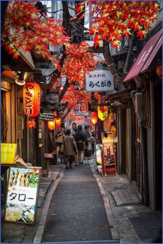 how to travel in tokyo japan 3 How to Travel in Tokyo Japan