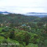 central sri lanka things to do in kandy sigiriya polonnaruwa tropical escape 1 06 150x150 Central Sri Lanka Things to do in Kandy Sigiriya Polonnaruwa Tropical