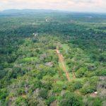 central sri lanka things to do in kandy sigiriya polonnaruwa tropical escape 1 22 150x150 Central Sri Lanka Things to do in Kandy Sigiriya Polonnaruwa Tropical