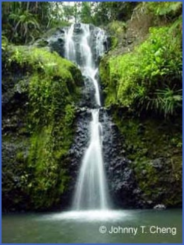 epic waterfalls suva fiji 7 EPIC WATERFALLS Suva Fiji