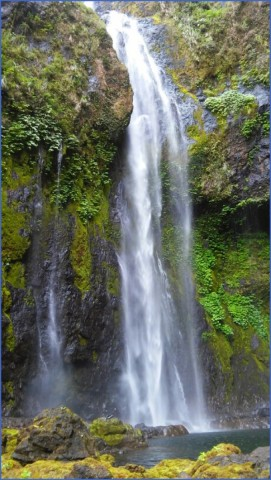 epic waterfalls suva fiji 9 EPIC WATERFALLS Suva Fiji