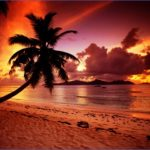 tropical paradise sunset 2 150x150 TROPICAL PARADISE SUNSET