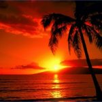 tropical paradise sunset 3 150x150 TROPICAL PARADISE SUNSET